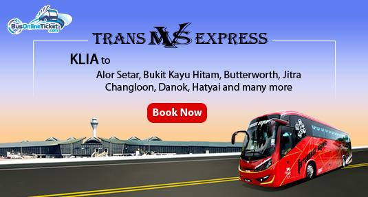 Trans MVS Express offer comprehensive bus services