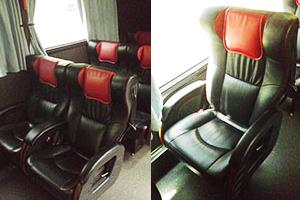 Luxury Coach Service