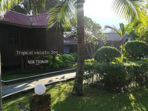 Spa Service in Paya Beach Resort