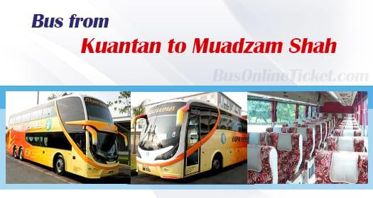 Bus from Kuantan to Muadzam Shah