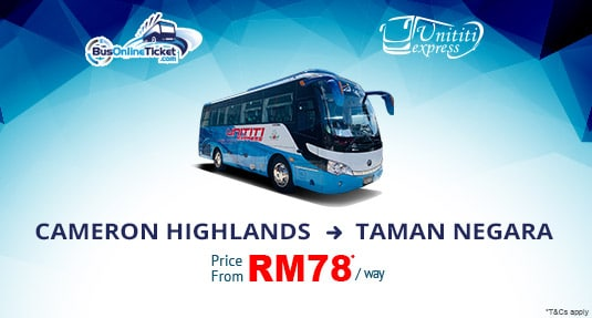 Unititi Express Offers Bus Service from Cameron Highlands to Taman Negara